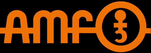 AMF Hakenschlüssel DIN 1810 B 45-50mm mit Zapfen